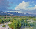 August Afternoon, Tucson by Robert Goldman